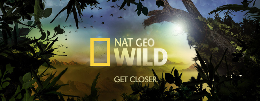 The numbers game nat geo online magazine