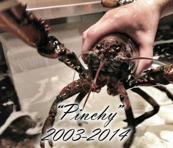 pinchy