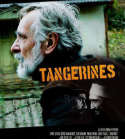 tangerines-poster_article